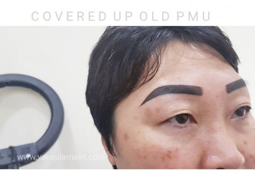 Covered Eyebrow PMU